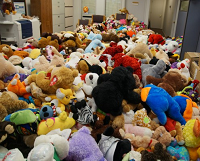 New & Gently Used Stuffed Animals